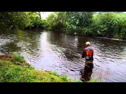Streamer Fishing In Ireland With Clonanav Fly Fishing