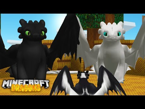 The NIGHTFURY FAMILY Need OUR HELP! - Minecraft Dragons
