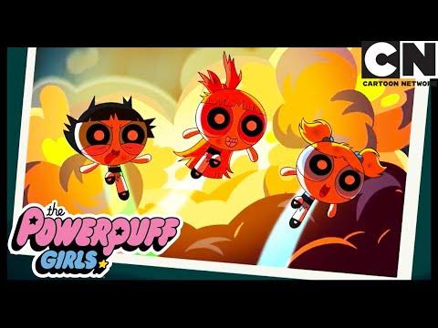 Fazendo arte com o Macaco Louco | As Meninas Superpoderosas | Cartoon Network 🇧🇷 from YouTube · Duration:  50 seconds