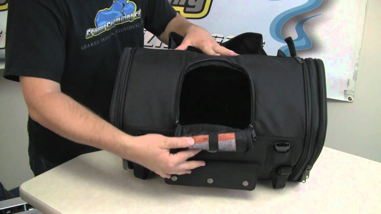 TOTW Your Motorcycle Pet Carrier Guide HD Video