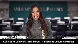 Dolphins Internacional: Episode 72