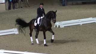 Ravel & Steffen Peters - Their Last Freestyle - Night of Musical Freestyles 2013