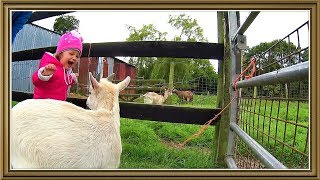 PARSONS GREEN OPEN FARM/ Ребятам о зверятах .Ирландия