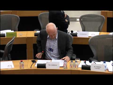 Michael Cashman MEP speech on the revision of the Cotonou Agreement