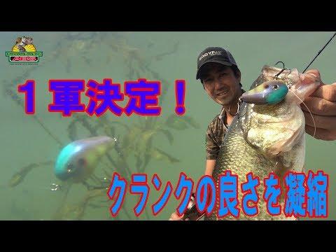 爆釣1軍決定ノーマンの小さなジャイアンファットボーイクランクの良さを凝縮 ABSバス釣り動画