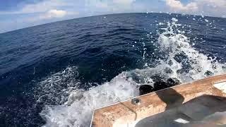 2018 Offshore World Championship | Budget Marine Spice Island Billfish | Sailfish