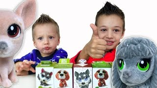 Пушистики Sweet Box Игрушки Собачки открываем сюрпризы Видео для детей Игрушки собаки