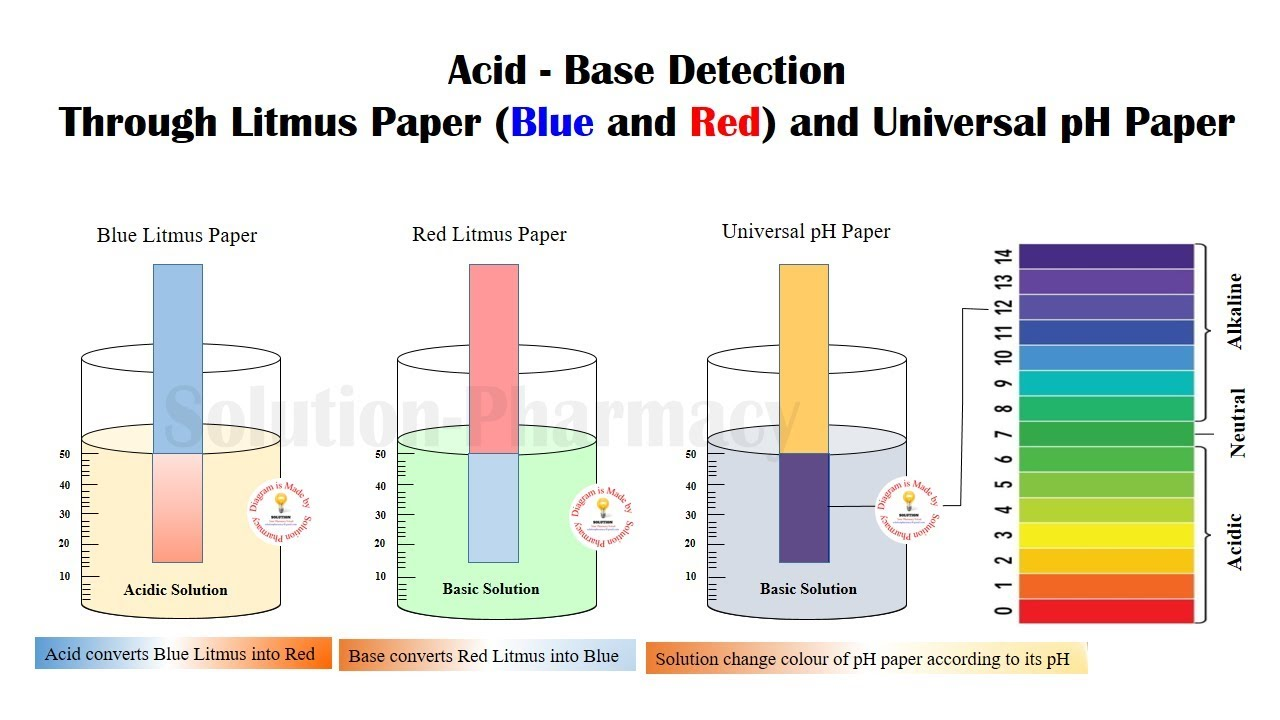 medium resolution of how to use litmus paper to test acid and base simple animated presentation part 01 solution pharmacy