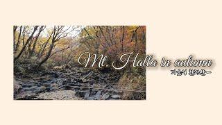 가을의 한라산 -백록담 왕복5시간 등정기
