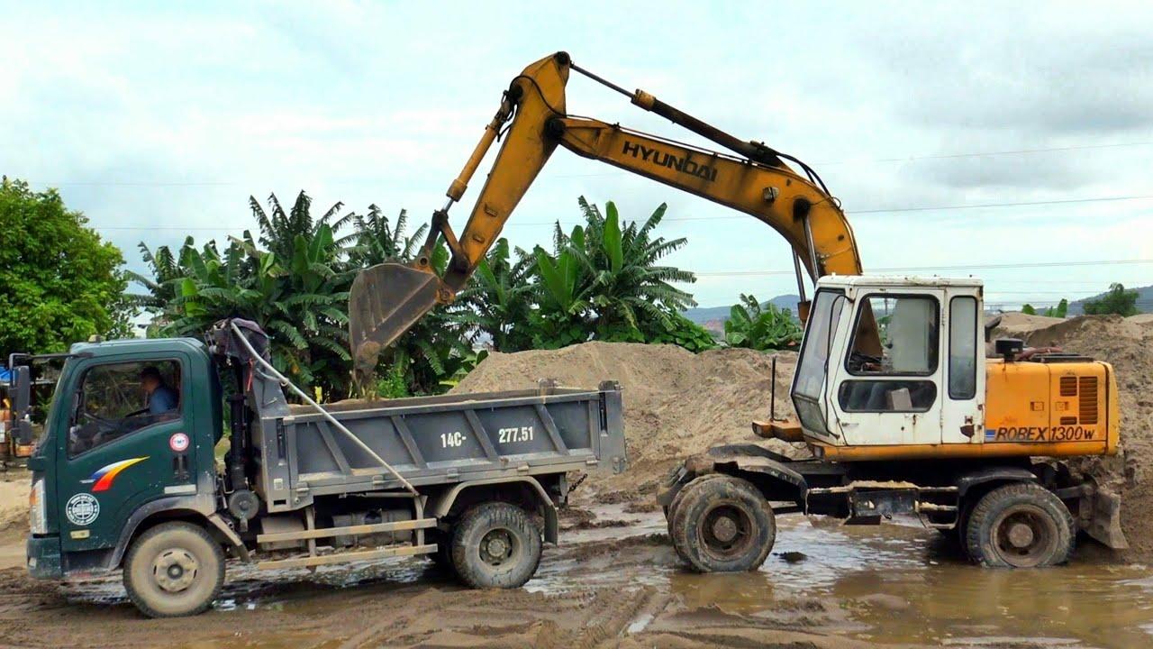 Máy Xúc Hyundai 1300w Làm Việc, Xe Ô Tô Tải Ben TMT Chở Cát | Excavator Truck | TienTube TV