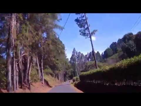 bajando desde la garita de  volcán hacia boquete 3