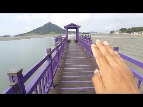 신한군 보라색섬 퍼플섬여행 퍼플교란 3개섬을잇는 보라색 목조교와 문브릿지