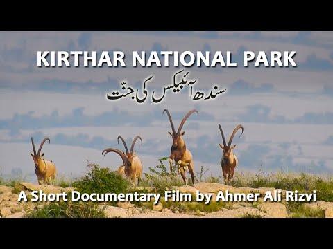 Kirthar National Park  |  Sindh Ibex ki Jannat