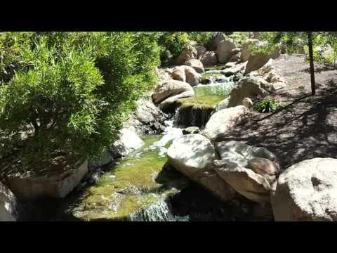 Japanese Friendship Garden Tour Phoenix,AZ