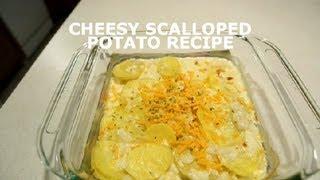 Cheesy Scalloped Potato Recipe : Potatoes