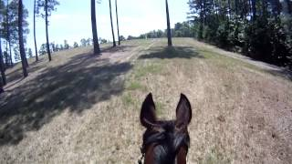Maya and Choco Lumber River XC Novice 60912.MP4