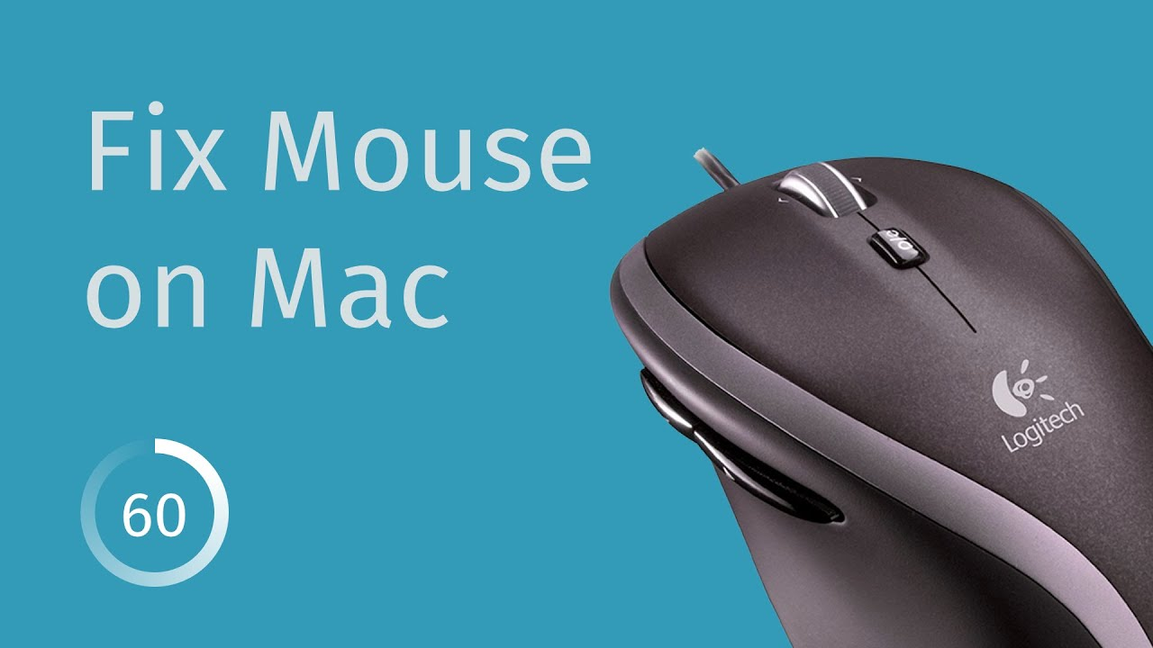 Fixing Back/Forward Mouse Buttons on Mac