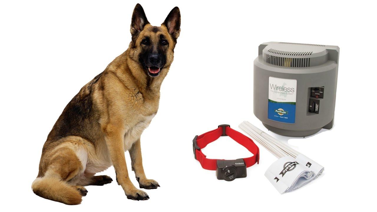 petsafe wireless dog fence pif300 review - Petsafe Wireless Fence