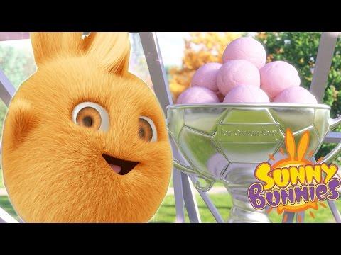 Cartoons for Children   Sunny Bunnies SUNNY BUNNIES ICE CREAM TROPHY   Funny Cartoons For Children