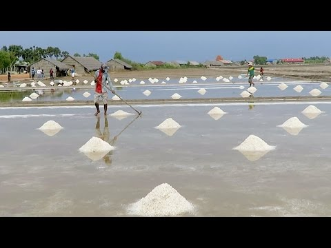 Happy Fishing tour to salt field at kep province - Famous tourisim zone | Street food