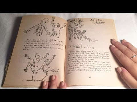 ASMR - Whispered Bedtime Story (Close Up, Page Turning)