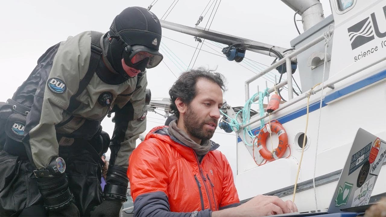 Studying the acidification of Alaska's waters (video