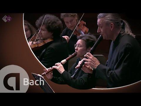 Brandenburg Concerto No.4 (Concerto Köln)