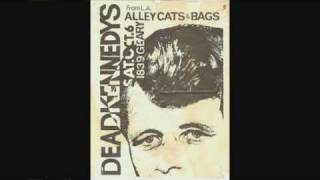 "The Alley Cats ""just an Alley Cat"""