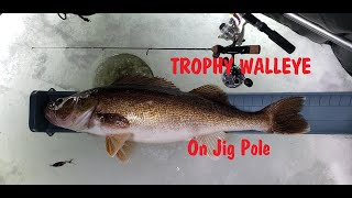 MONSTER WALLEYE on small Ice Fishing jig pole NFN Icehole Adventure 10