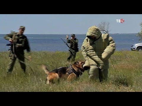 Как охраняют границы России в Крыму