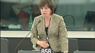 Diane Dodds - Working Time Directive & Lorry Drivers - 15th June 2010