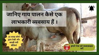 जानिए गाय पालन कैसे एक लाभकारी व्यवसाय हैं - Know How Dairy Business are a Viable Business