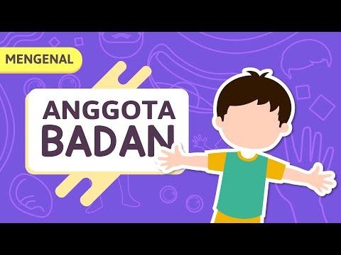 Kartun Anak Muslim Belajar Mengenal Anggota Tubuh Untuk Anak Tk Video Edukasi Anak Yufid Kids Youtube