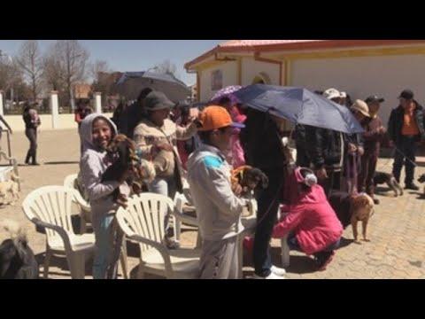 Bolivia conmemora fiesta de San Roque con bendiciones para los perros