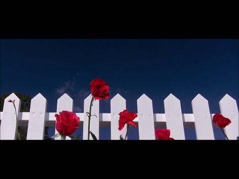 Blue Velvet - Opening Sequence