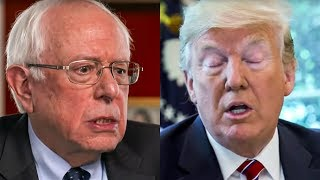 Trump Desperate To Find Ways To Make Sanders Lose
