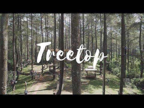 Bandung Treetop Adventure Park - Lembang
