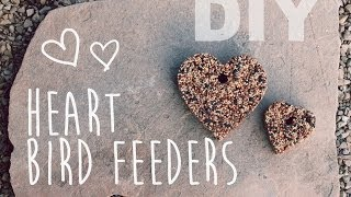 Diy Heart Bird Feeder