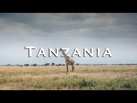 Great Africa Safari in Tanzania | Tarangire National Park