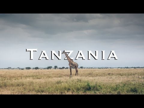 great-africa-safari-in-tanzania-|-tarangire-national-park