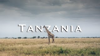 Great Africa Safari in Tanzania | Tarangire National Park