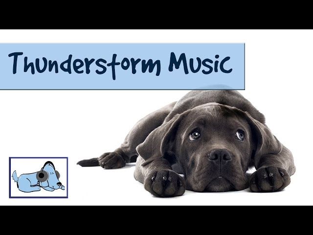 Thunderstorm Music! Calm your Dog During Thunder and Lightning - Stop Dog Shaking, Crying, Barking.