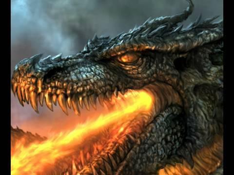 Dragon Bilder