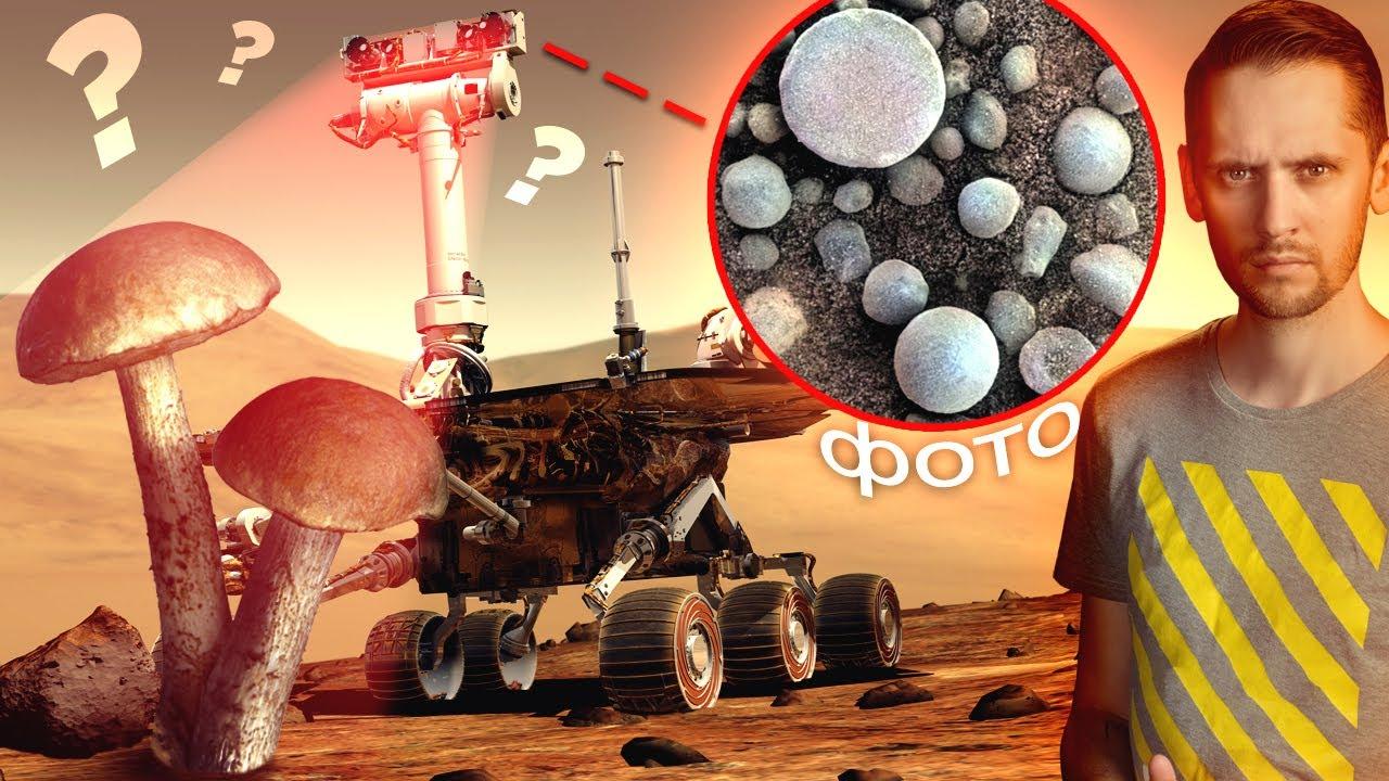 Правда о грибах на Марсе. Жизнь наконец нашли? (ха!) / Астрообзор #81