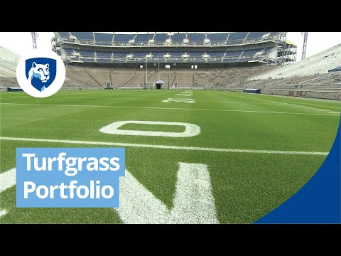 penn-state-turfgrass-degree-programs-online
