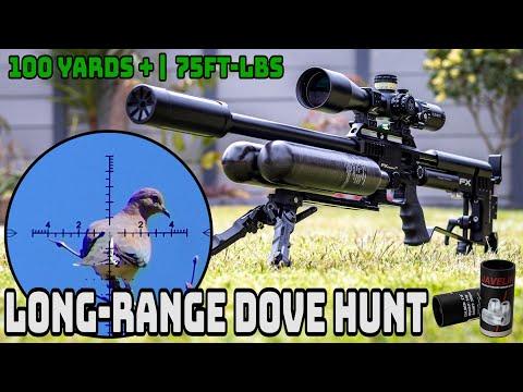 Long-Range Dove Hunt