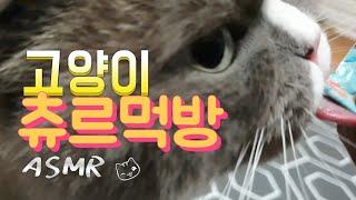 [까까캔디] 고양이 간식 먹기 ASMR -츄르먹방-  ( Cat snack )