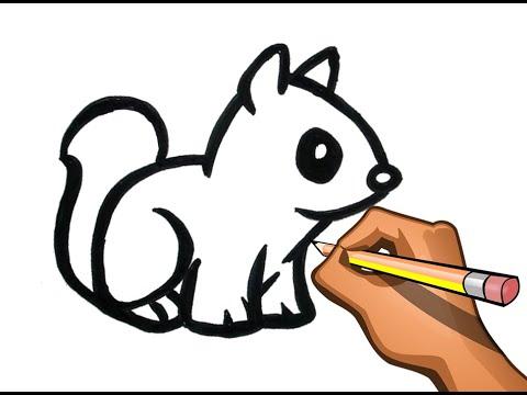 Como Dibujar Ardilla De Campo Dibujo Facil De Ardilla En Alerta Youtube