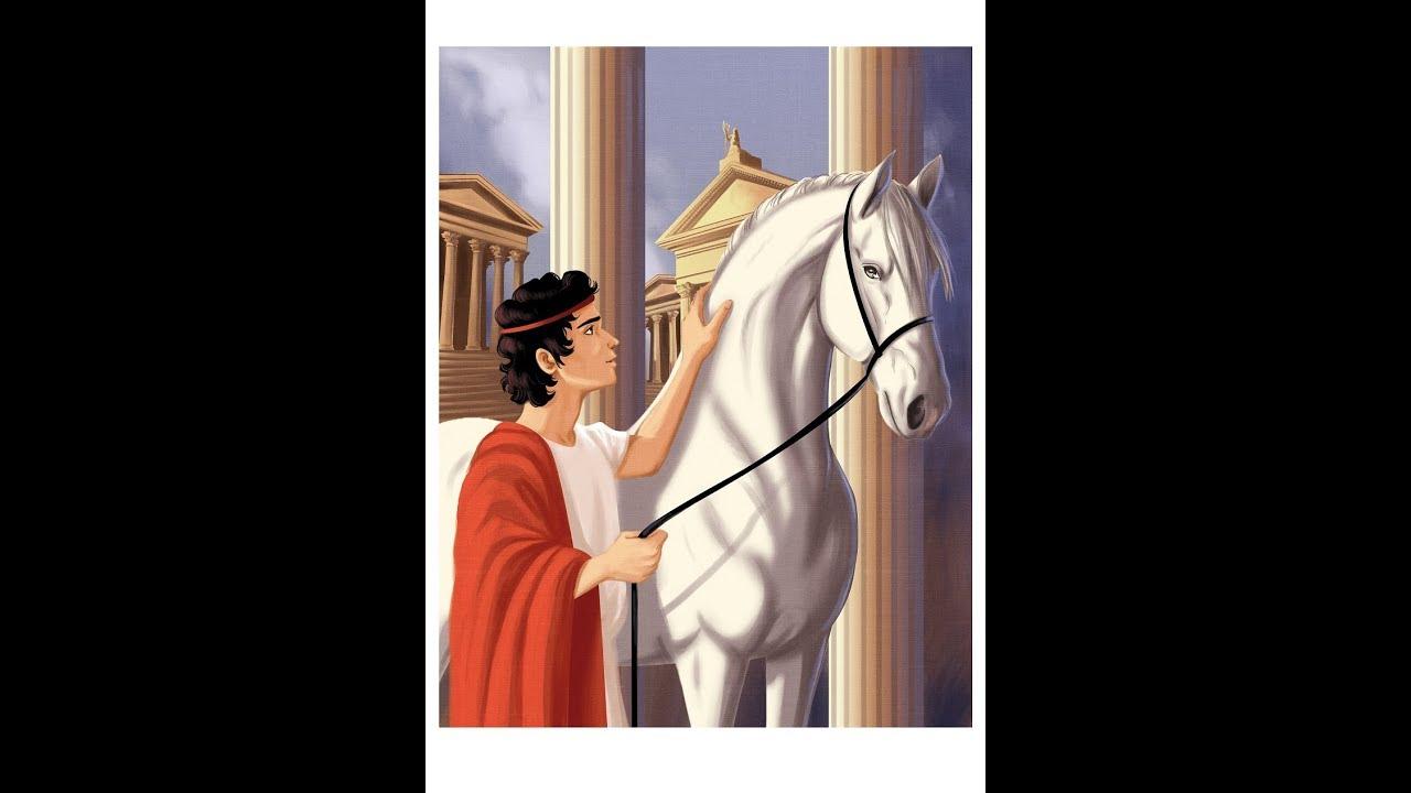 La Storia Del Cavallo Che Divenne Senatore Youtube