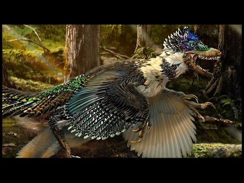 Pangaea Today: Palaeontology News -- New Large Feathered Dromaeosaurid